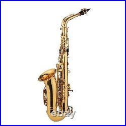 Alto Eb Sax Saxophone Brass Golden Set Woodwind Instrument with Padded Case Z6J3