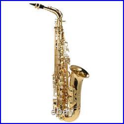 Alto Saxophone Brass Lacquered Gold Eb E Flat Sax 802 Key + Case Care Set H1B0