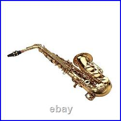 Alto Saxophone Brass Lacquered Gold Eb Sax Woodwind Instrument with Case F1K0