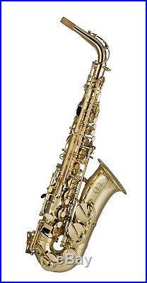 Artemis A1 Alto Sax Outfit Gold Lacquer