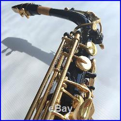 Black Alto Sax Brand New STERLING Eb Saxophone Case and Accessories