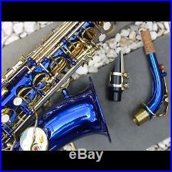 Blue Alto Sax Brand New STERLING Eb Saxophone Case and Accessories