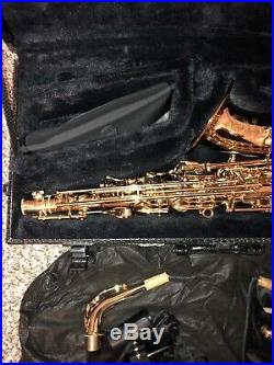 Cannonball Professional Alto Sax A5-L Stone Series, Big Bell. With Hard Shell Case
