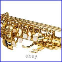 Eb Alto Sax Saxophone School Paint with Case & Accessories