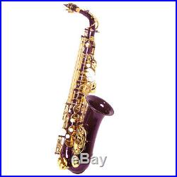 HOLIDAY SALE! Sky Alto Saxophone w Wonderful Versatile Case LIMITED TIME