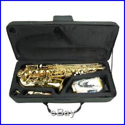 NEW 2017 JUST RELEASED MERANO E Flat Eb Alto Saxophone Sax & YAMAHA CLEAN KIT