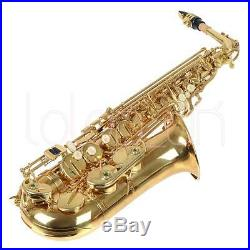 New Professional Eb Alto Sax Saxophone Paint Gold with Case and Accessories Pro