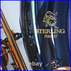STERLING BLUE ALTO SAX Bb Saxophone Brand New Case FREE EXPRESS POST