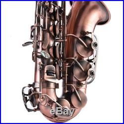 Saxophone Alto Eb Alto Avec Boîte Haute Selmer E Flat Sax Professional Bronze