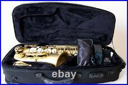 Selmer saxophone alto reference 54 sax in vintage mit Selmer Light Case
