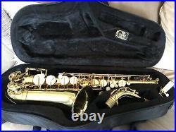 Trevor James Alpha Sax, Starter Alto Saxophone Beginner Saxophone