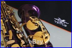 Venus ALTO SAXOPHONE Sax PURPLE & GOLD Keys, Ready to Play