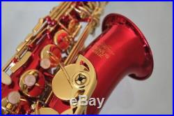 Venus ALTO SAXOPHONE Sax RED Color & GOLD Keys, Ready to Play, NEW