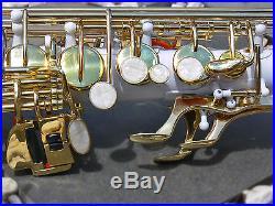 White Alto Sax Brand New STERLING Eb Saxophone Case and Accessories