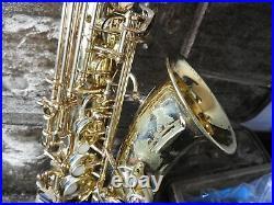 YANAGISAWA Alto SAX A-900 saxophone MAINTENANCE from japan Rank C